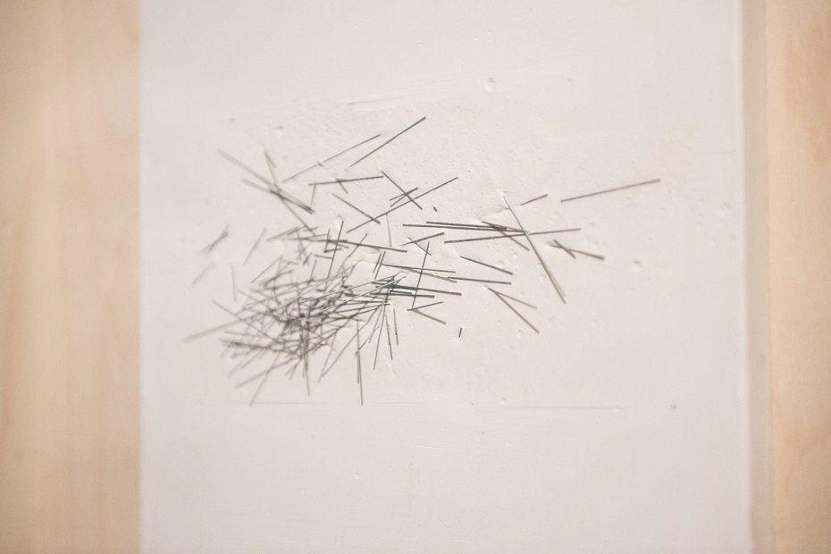 Latarka Galéria / Vonalak kiállítás