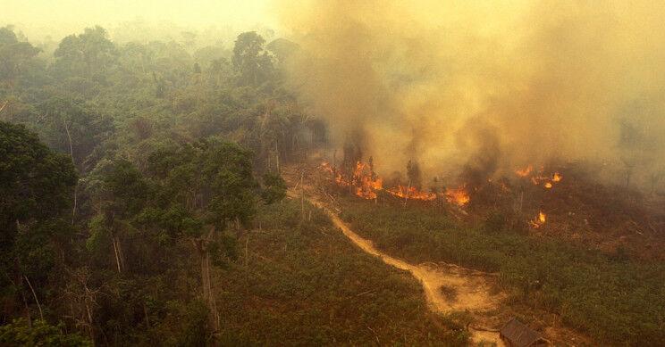 amazonasi tűzvész