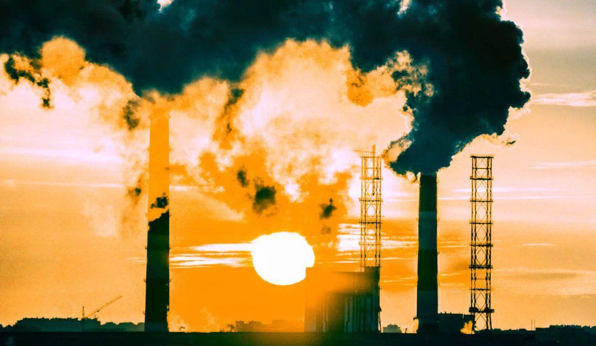 klímakatasztrófa collins szótár az év szava 2019