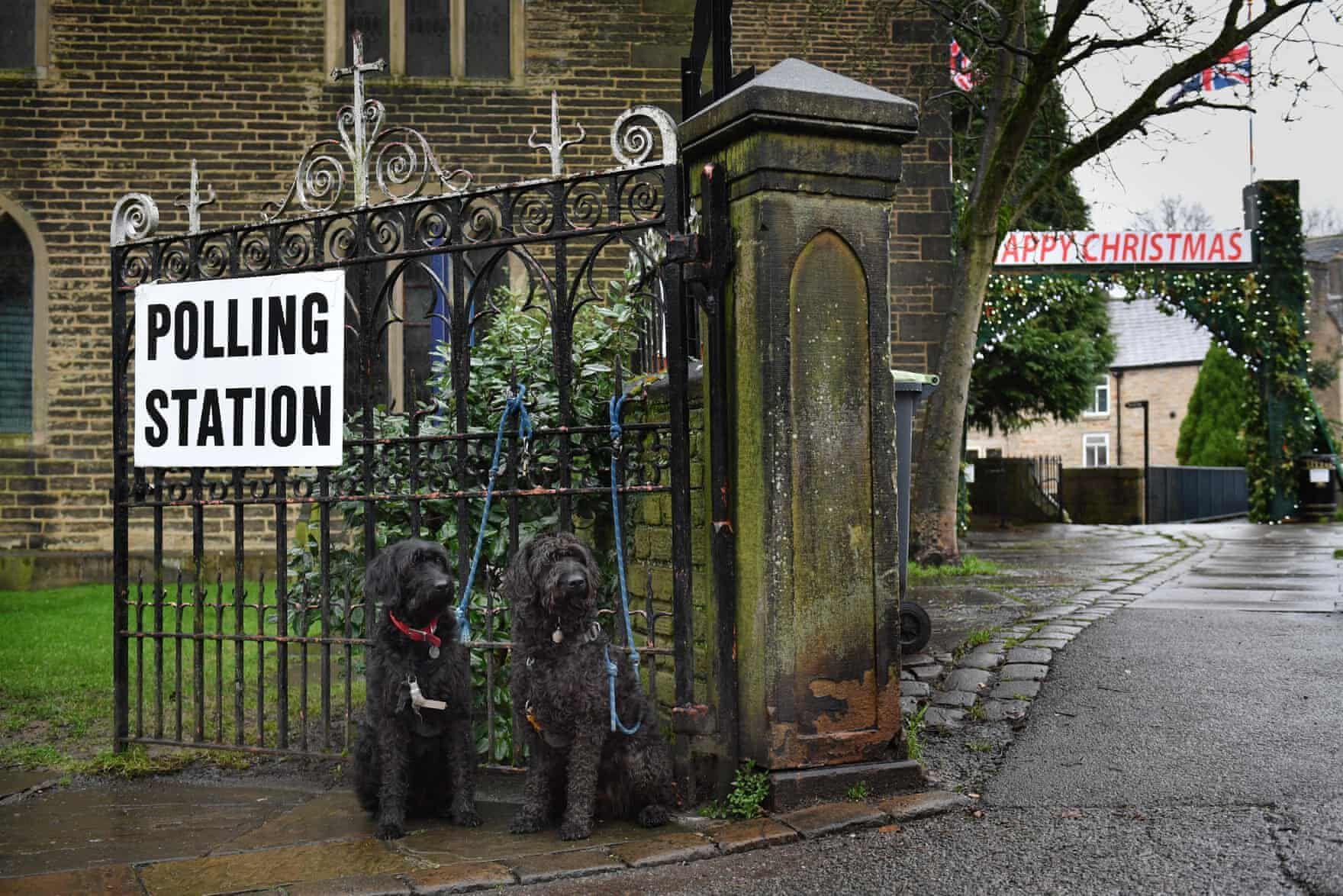 brit választás 2019 kutyák2