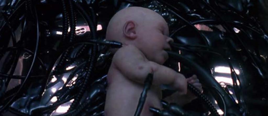 matrix embrio.jpgo