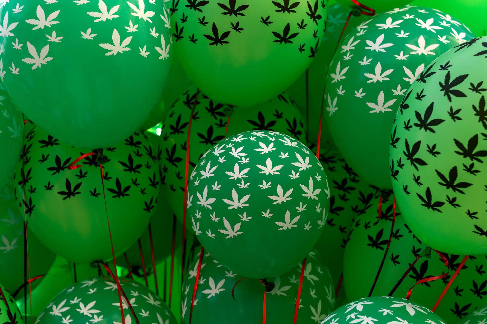 Drogpolitika Magyarorszagon Fu Legalizalasa Marihuana