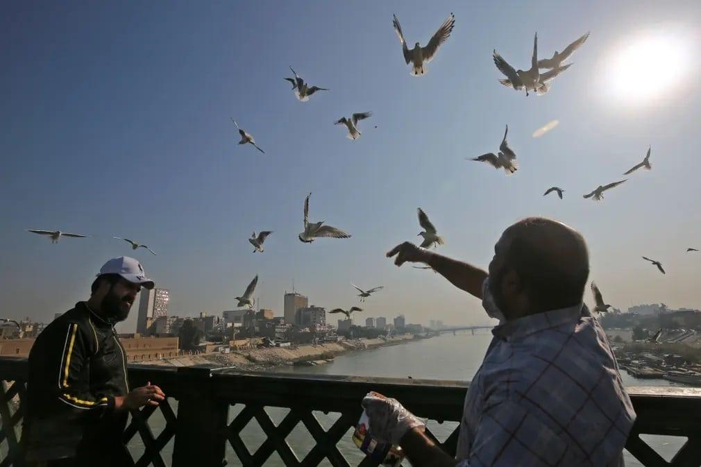 Siraly Irak Tigris Folyo Nap Fotoja