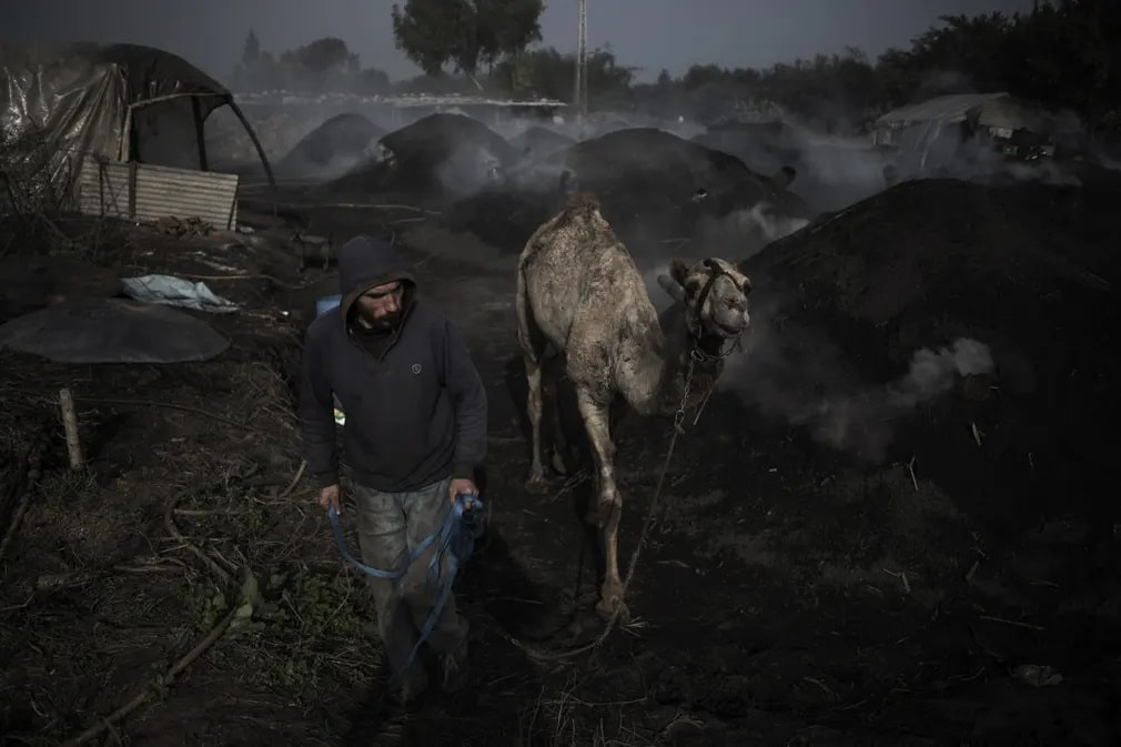 gaza teve palesztin tradicio romok nap fotoja