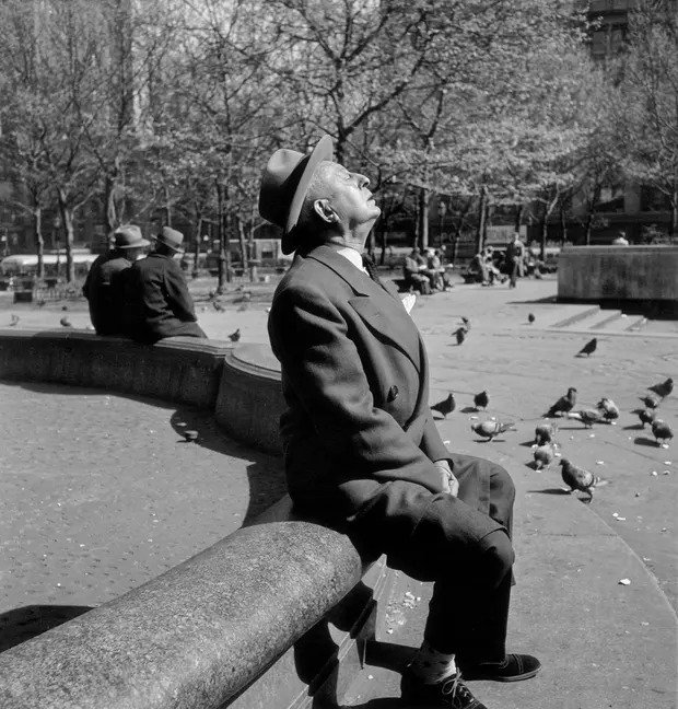 elliott erwitt new york fekete feher fotografus forografia bacsi idos park napozas nap foto