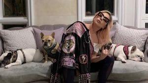 lady gaga kutyai elraboltak