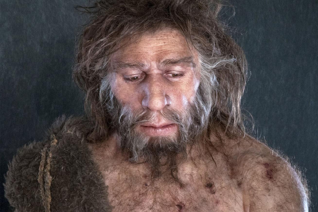 neandervolgyi ember osember