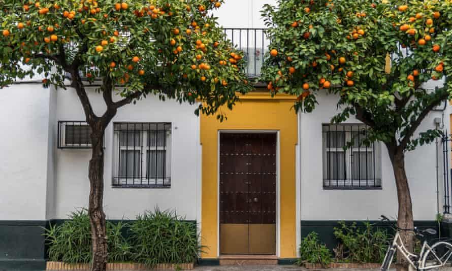sevilla narancs elektromos aram