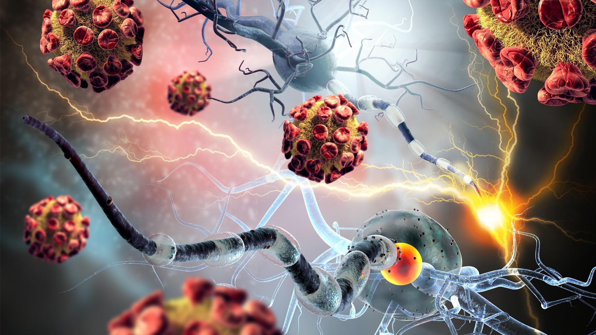 Neuritin Autóimmun Betegség Kezelse Fehérje