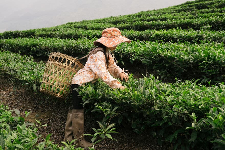 Vietnam Fotok 3