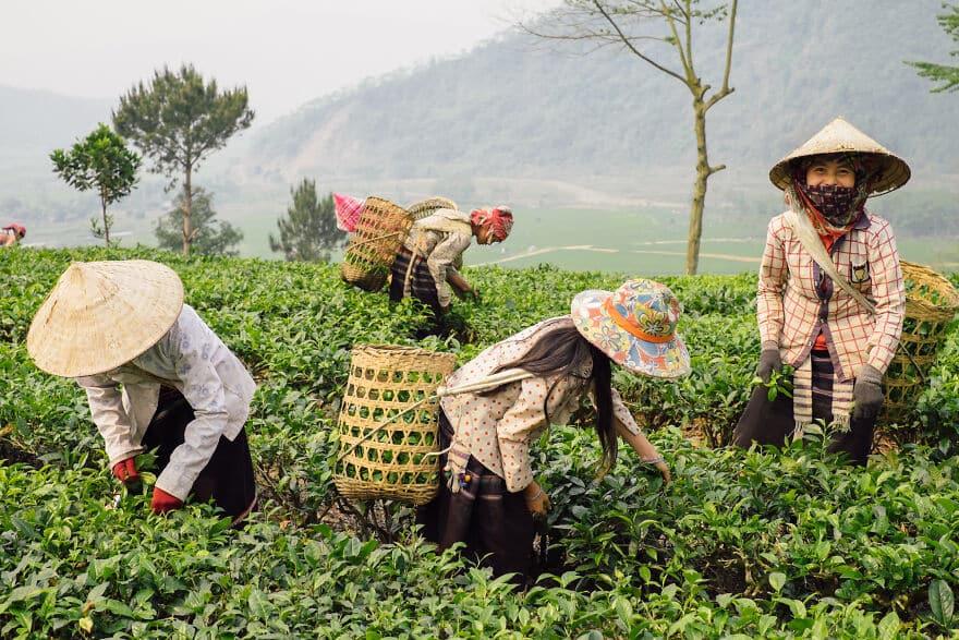 Vietnam Fotok 8