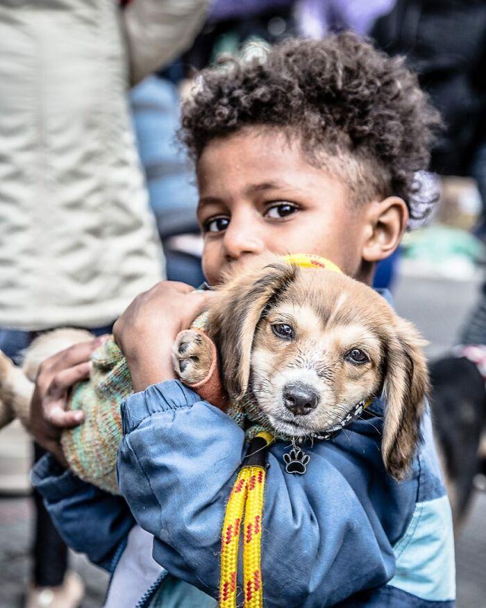 Brazil Hajlektalanok Kutyak 2