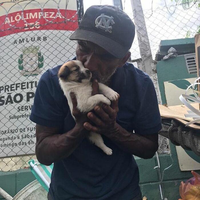 Brazil Hajlektalanok Kutyak 4